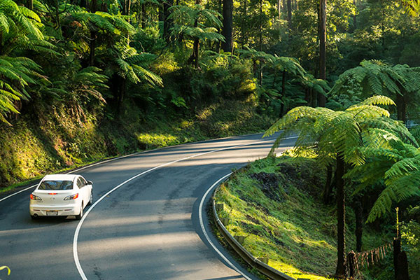 Racv Member Offer Save 15 On Thrifty Car Hire Racv