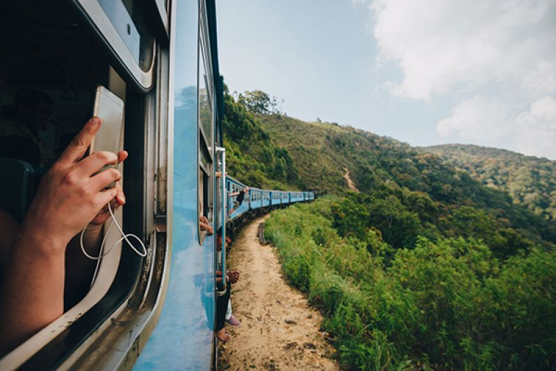 train travel in the wilderness